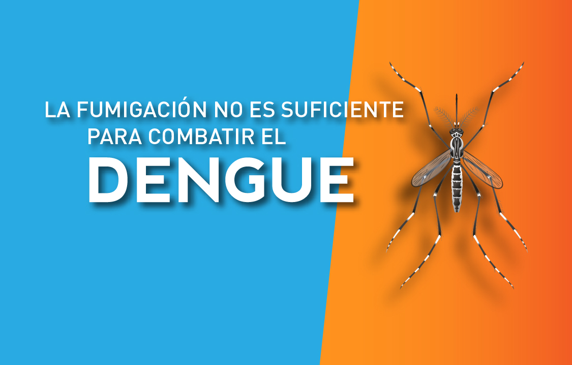 placa dengue web cct-02